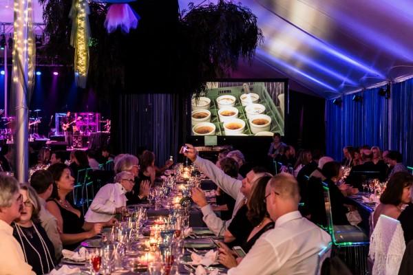 Vinfest 2014