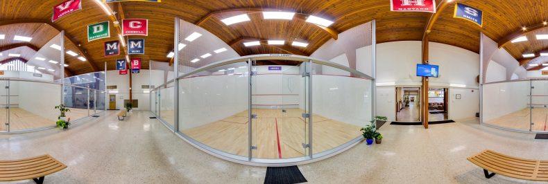 The Squash Ball